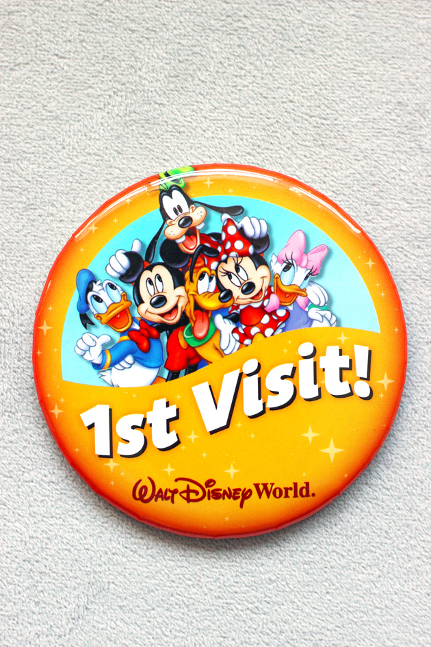 My Adventurous Trip to Disney 2016 - Follow my guide on the do's and don'ts of Disney World. How to eat plant based, avoid wait times, save money on tickets, and more!