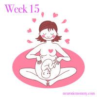 Pregnancy Week 15 - NeuroticMommy pregnancy week by week. NeuroticMommy.com #vegan #moms #motherhood