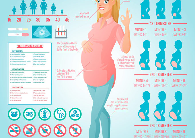 Pregnancy Weeks 16-19 - NeuroticMommy.com