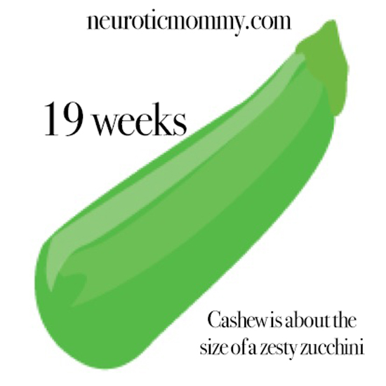 Pregnancy Weeks 16-19 - Discoveries, symptoms, doctor visits, ultrasounds, food cravings and more. NeuroticMommy second trimester. NeuroticMommy.com