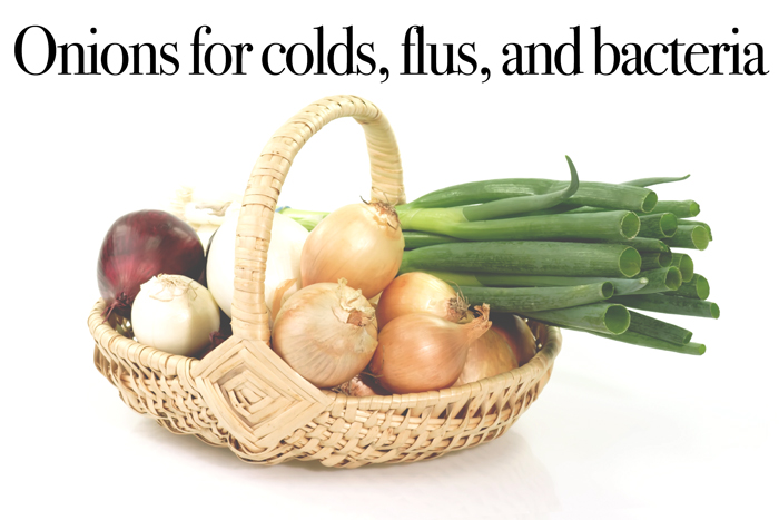 How to Use Onions Against Colds Flus and Bacteria - The many healing benefits of onions and how to use them to prevent and help sickness. NeuroticMommy.com #naturalrememdies