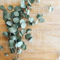 Hanging Eucalyptus in your Shower looks so pretty, spa like, but not only that, it provides a sense of peace and tranquility along with other healing properties. Think anti-stress, energizing and decongesting benefits. NeuroticMommy.com #wellness #healing #eucalyptus