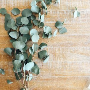 Hanging Eucalyptus in your Shower looks so pretty, spa like, but not only that, it provides a sense of peace and tranquility along with other healing properties. Thinkanti-stress, energizing and decongesting benefits. NeuroticMommy.com #wellness #healing #eucalyptus